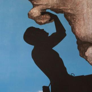 Boulderdash Rock Climbing Wall Mural