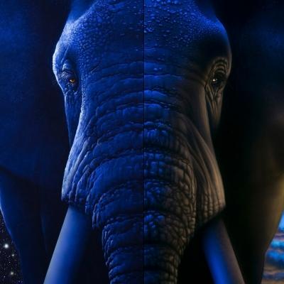 Day Light to Black Light Elephant UV Fine Art Painting