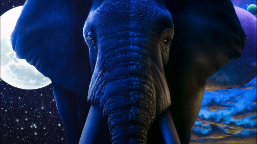 Day Light to Black Light Elephant UV Fine Art Painting