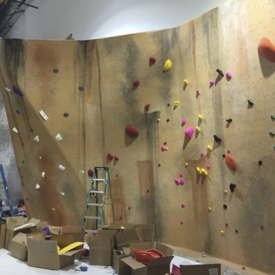 Boulderdash Rock Climbing Wall Mural