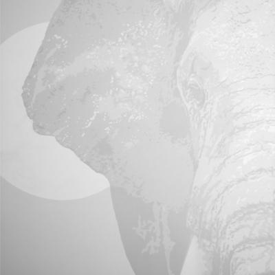 Transcendental Elephants UV Fine Art Painting Day Light to Black LIght