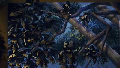 Tree Closeup Black Light - Mighty Oak Tree Black Light Mural